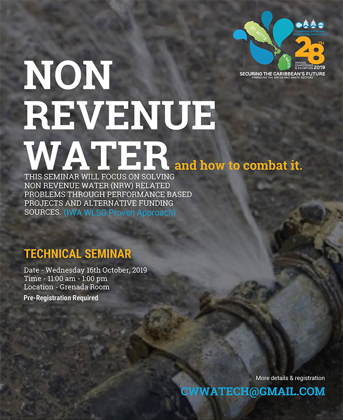 Technical Seminar - Non Revenue Water and how to combat it