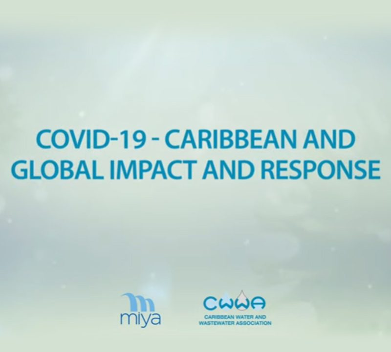 COVID-19 Webinar : Caribbean and global impact and response